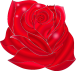 For Every Love Rose